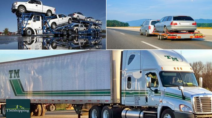 Tmshipping Is an Expert In The Field Of Transporting Services